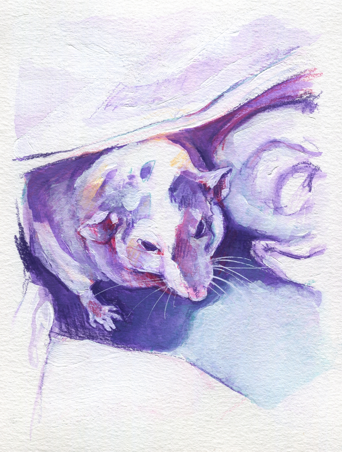 The100RatProject 063/100