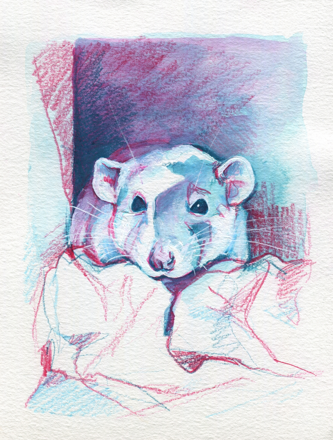 The100RatProject 089/100
