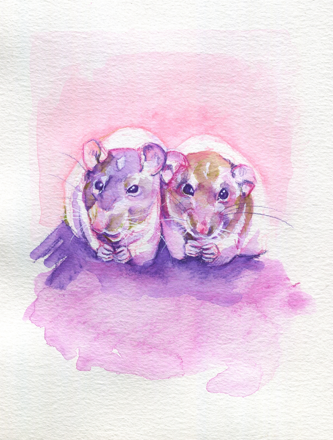 The100RatProject 094/100