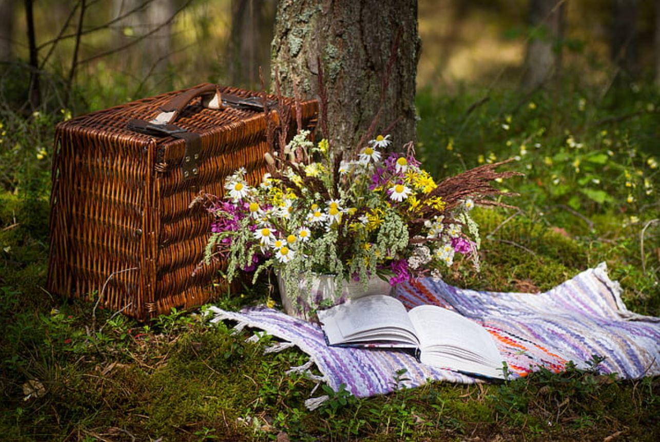 picknick foto.JPG