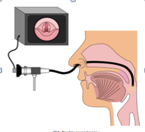 paed endoscopy image.png