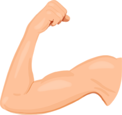 Cannell-SagaIllos-Bicep.png