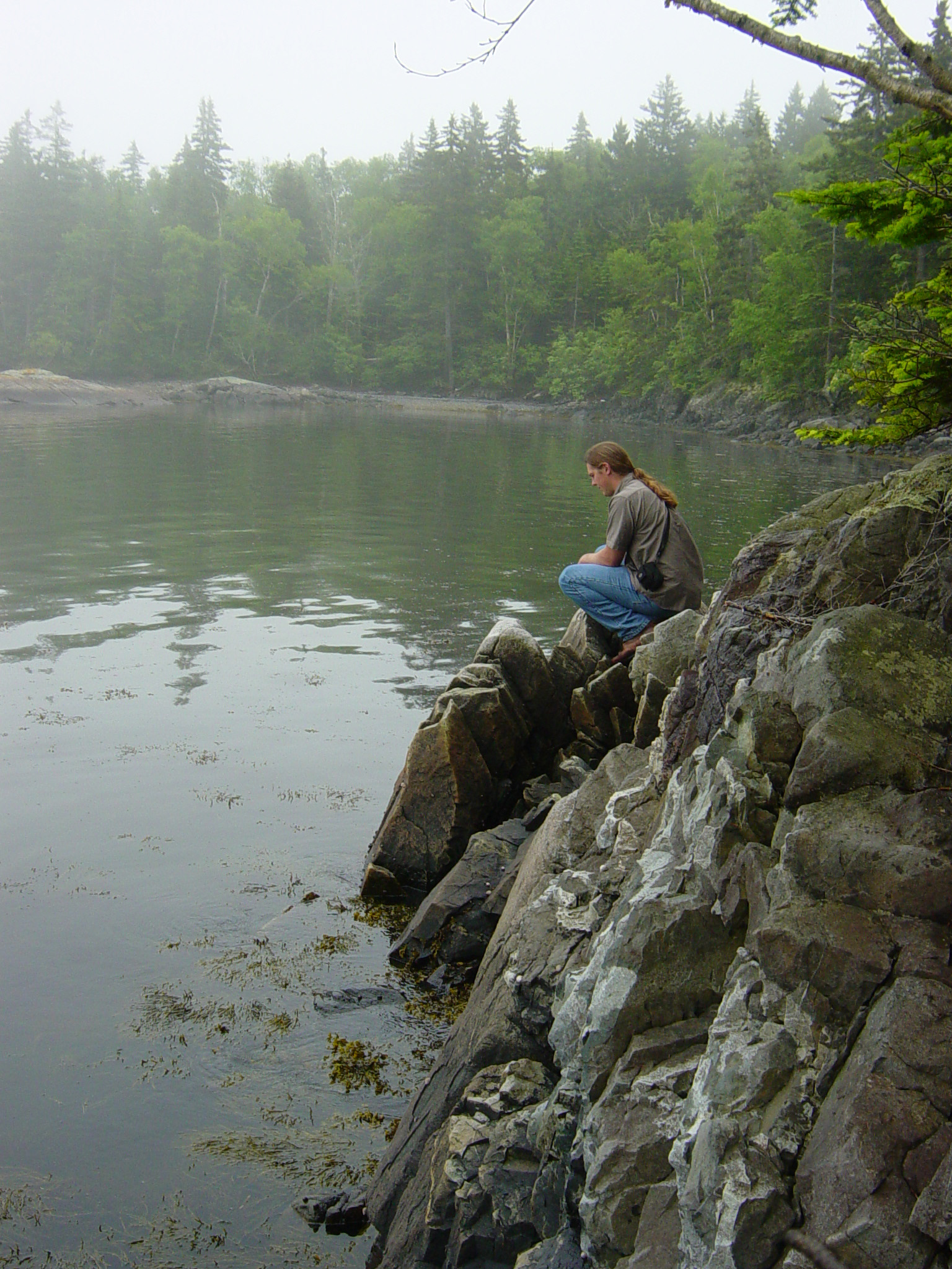 GALT cove contemplation at end of Willard Pt trail.jpg