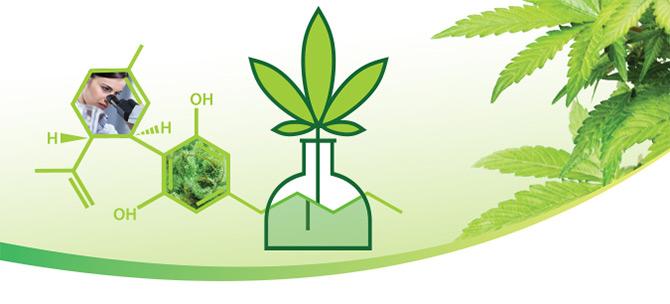 Cannabis_Testing_Header.jpg