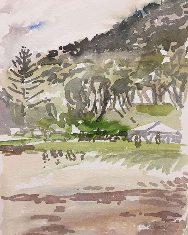 Watercolour painted on the weekend- beach camping with lovely families - and back home before the storm hit! #pleinairpainting #pleinairwatercolor #watercolourdrawing #coaldalebeach