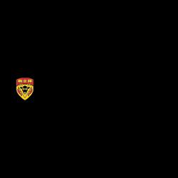 UCalgary-Cumming-School-of-Medicine.png
