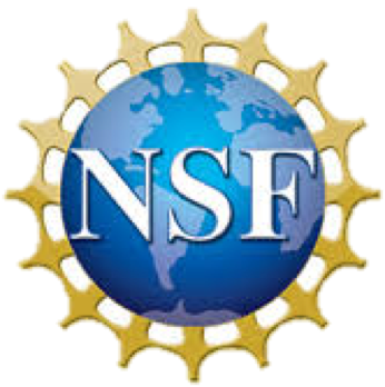 nsf-2foku41.png
