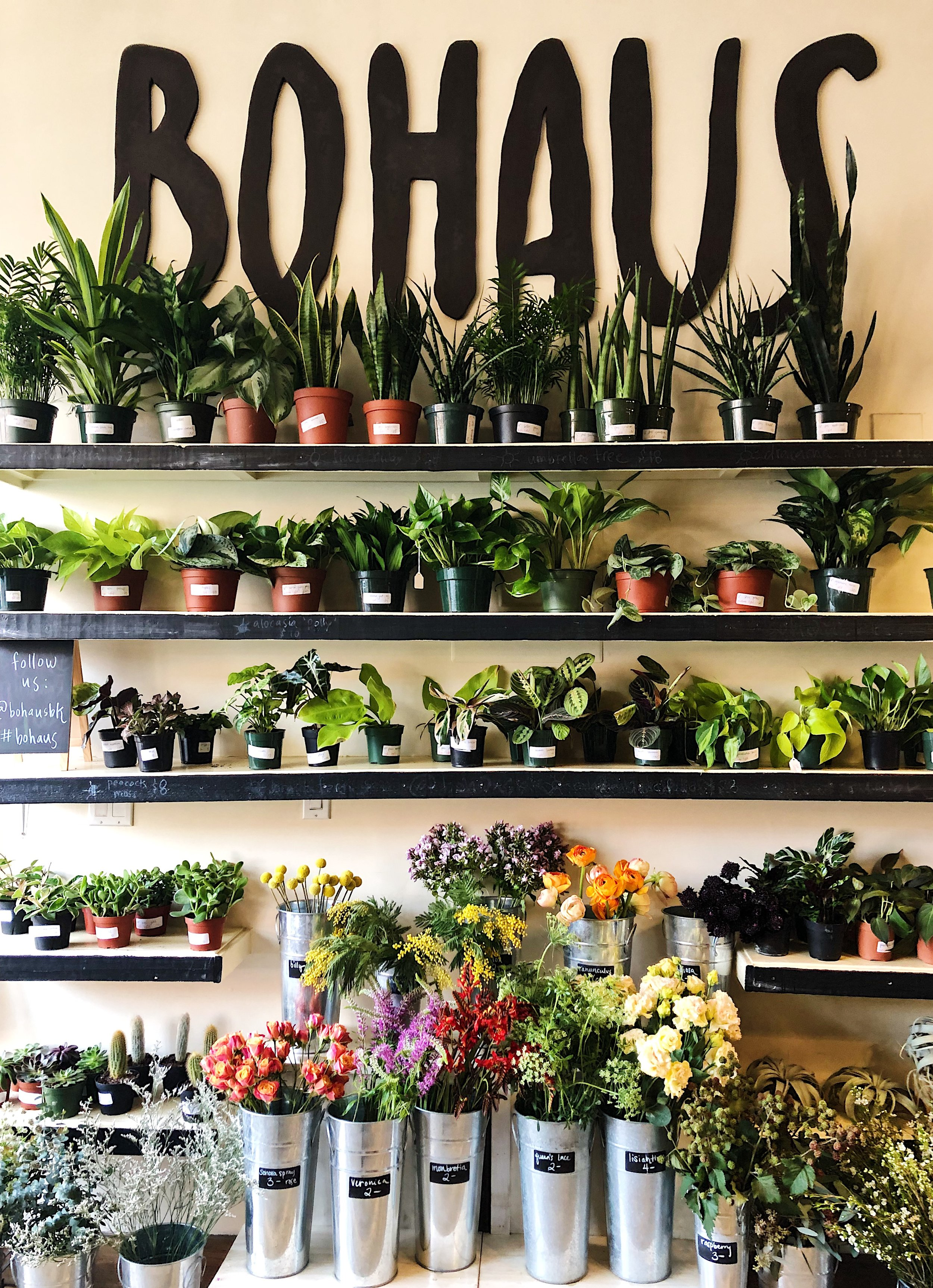 25 New York restaurants and coffee shops with plants