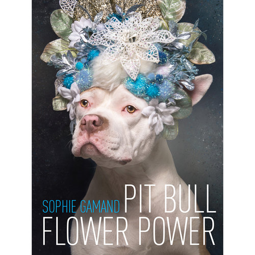 Who said dog moms can't have their day in the sun on Mother's Day?  Sophie Gamand  is a New York based photographer exploring the relationship between humans and dogs in her work. Her most recent book, Pit Bull Flower Power aims to shed light on our misunderstanding and mistreatment of pit bulls, through humorous and inviting imagery of adoptable pit bulls in flower crowns. She photographs adoptable dogs for free and you can support her by purchasing other items from her  online shop  too.