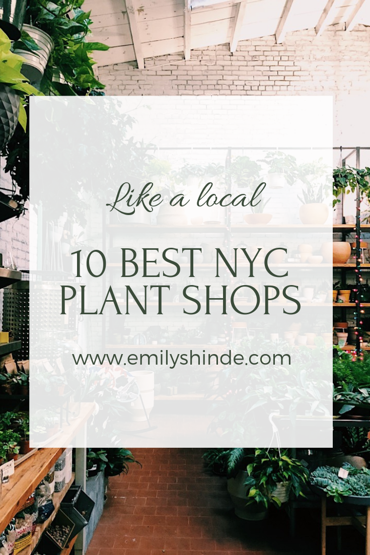 10 favorite nyc plant shops