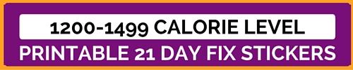21 day fix, beachbody, erin condren planner stickers, jacqui grimes