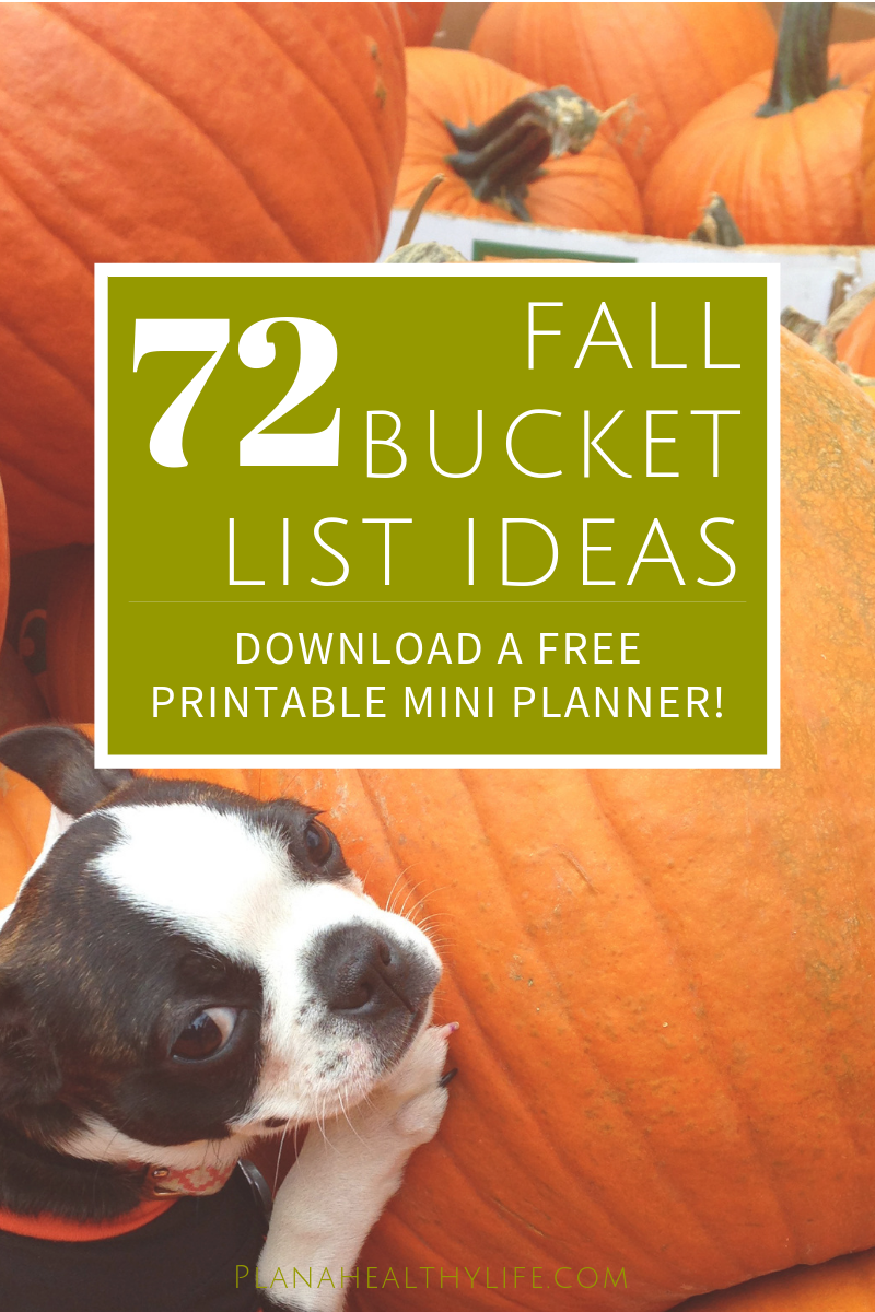 Plan a happy and memorable autumn with these 72 fun Fall Bucket List ideas and a simple 4-step system to make your fall bucket list a reality! Download a free printable mini planner with all 72 fall bucket list ideas,plus space to brainstorm and plan  your own amazing autumn!