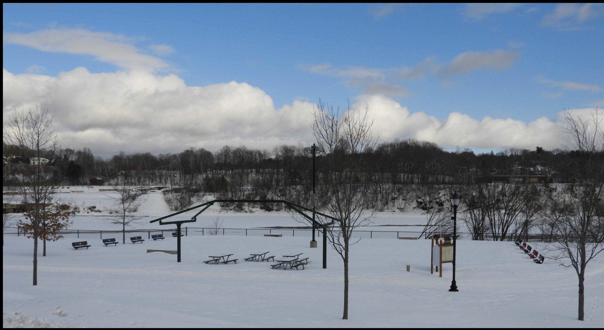 Fallow Fields  (March 4, 2019)