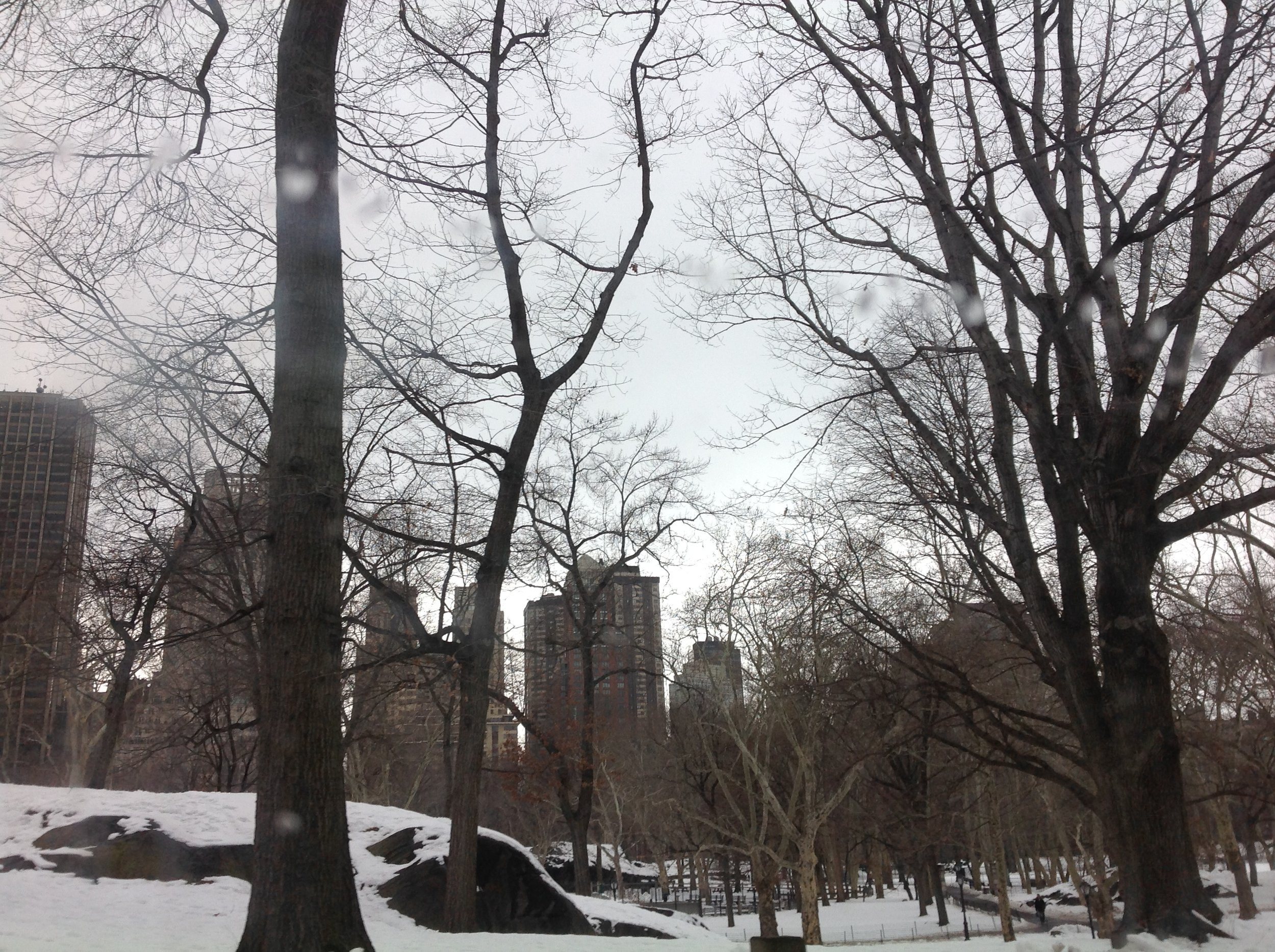 - Central Park in the February Snow.
