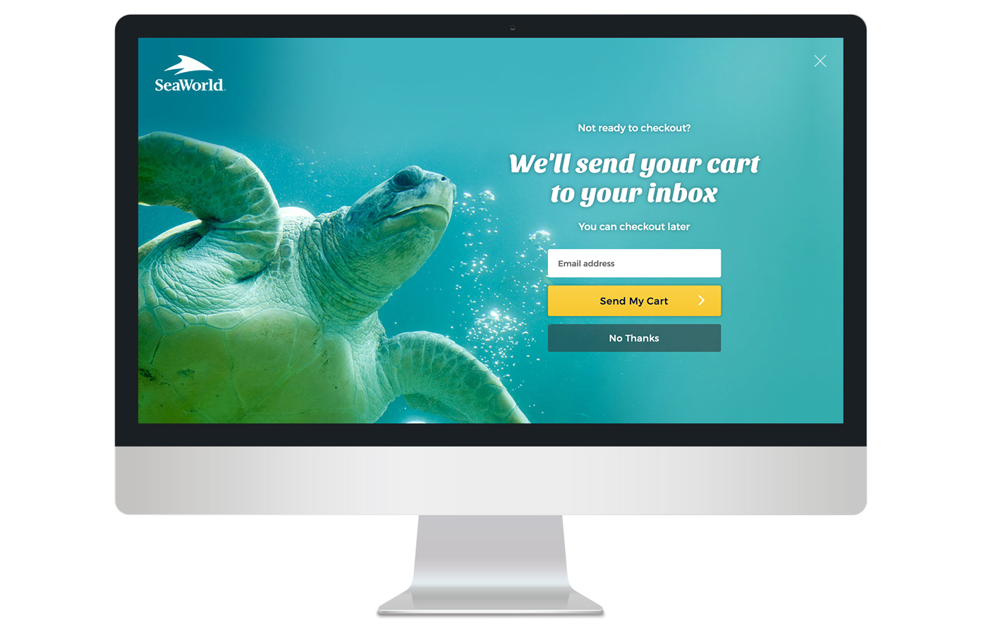 Full screen entrance email capture on desktop
