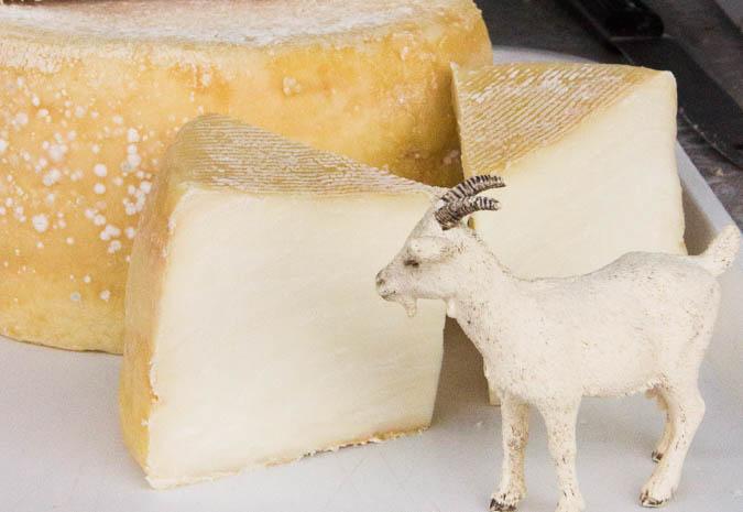 Ardsallagh cheese