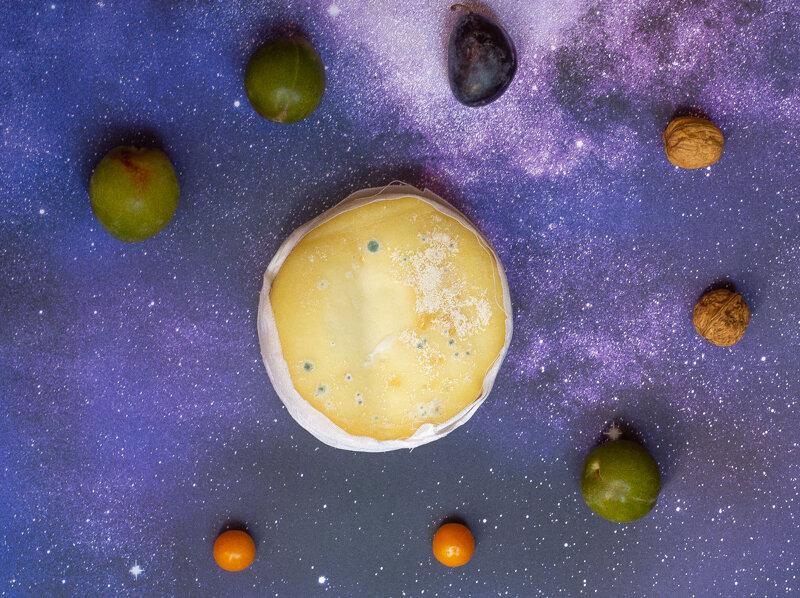 Ovelha solar system circle-6217.jpg