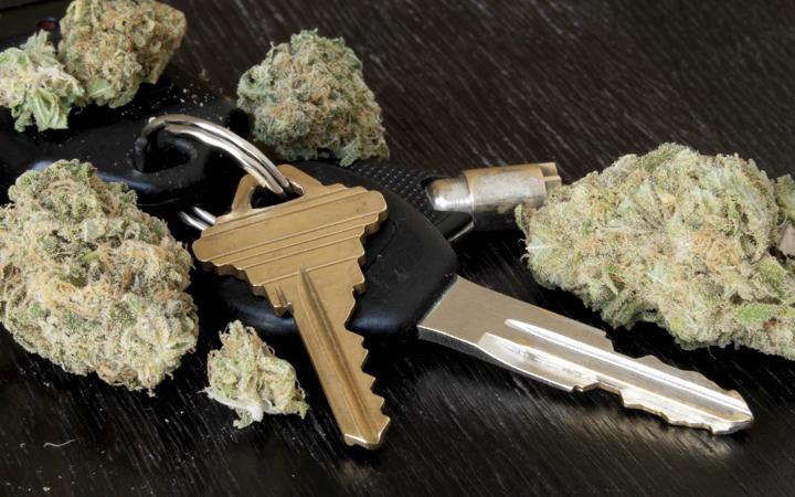 rDgi6wedTO6PvOuXZJWE_car-keys-and-cannabis-buds.jpg