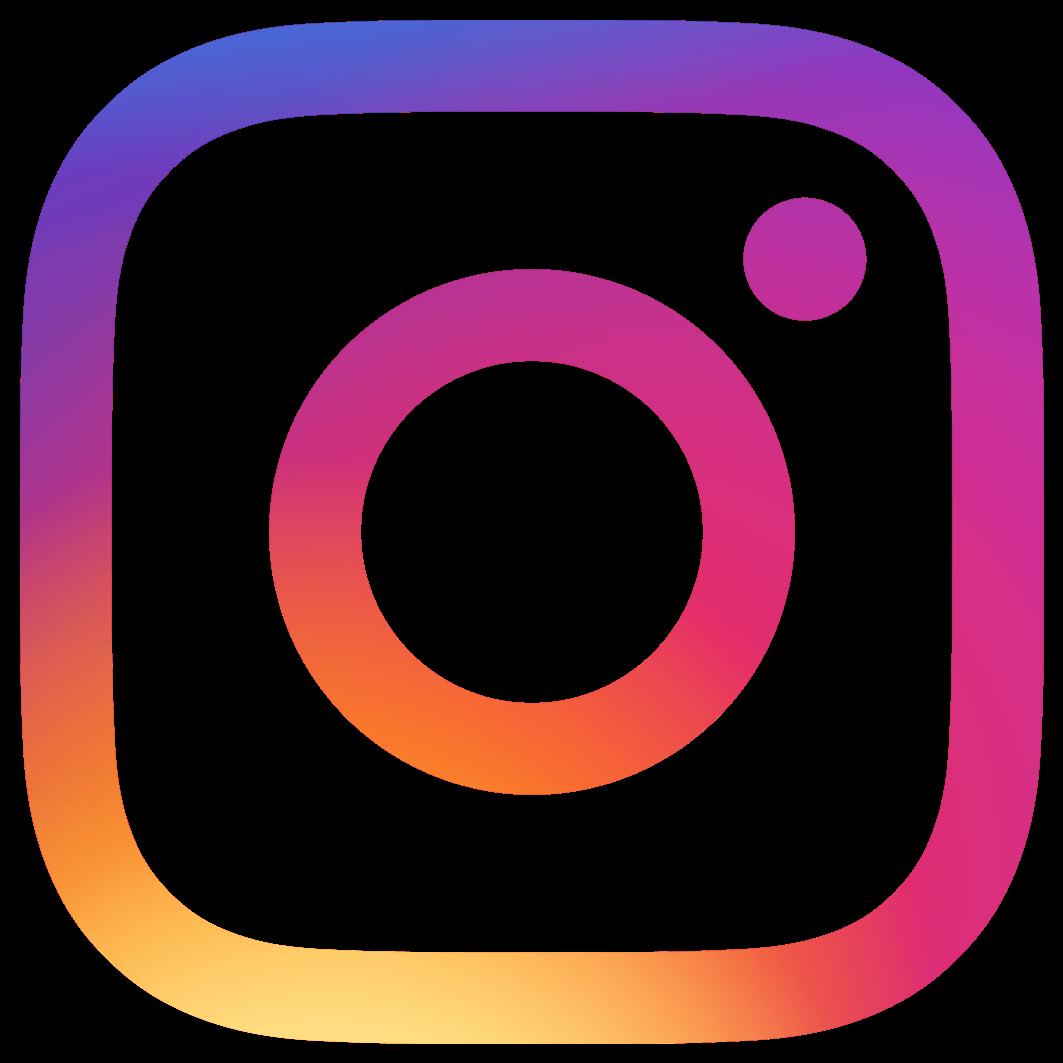 """Résultat de recherche d'images pour """"logo instagram"""""""