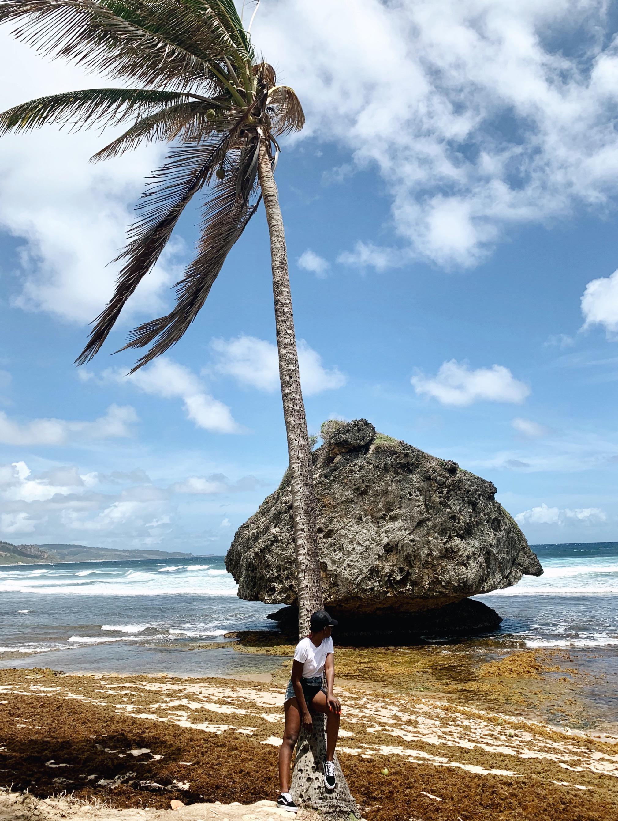 Bathsheba Barbados.JPG