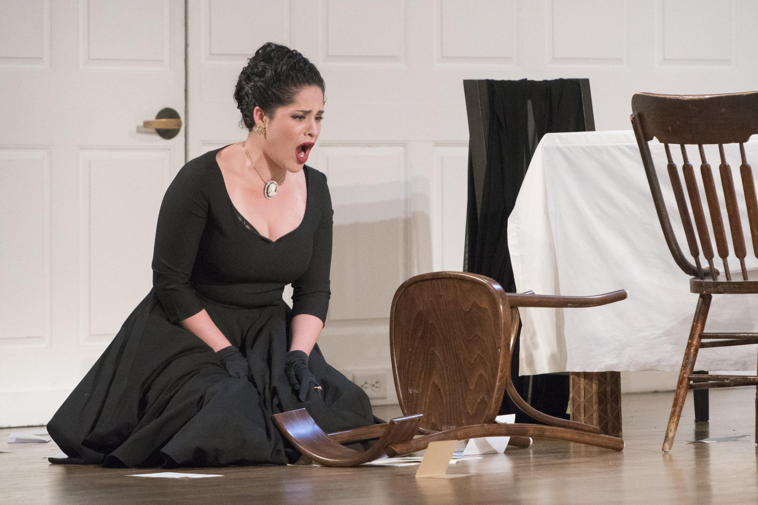 Opera Scenes 2017 007.jpg