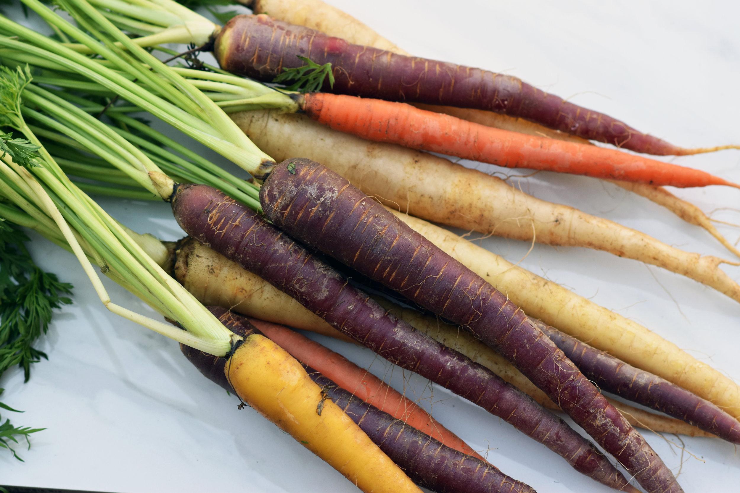 heirloom rainbow carrots - beautifully raw because raw is beautiful