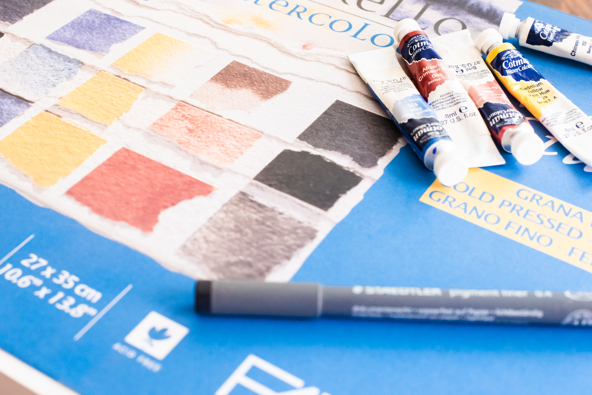 I used heavy (300 gsm) cold-pressed, fine-grain, acid-free paper for the watercolours