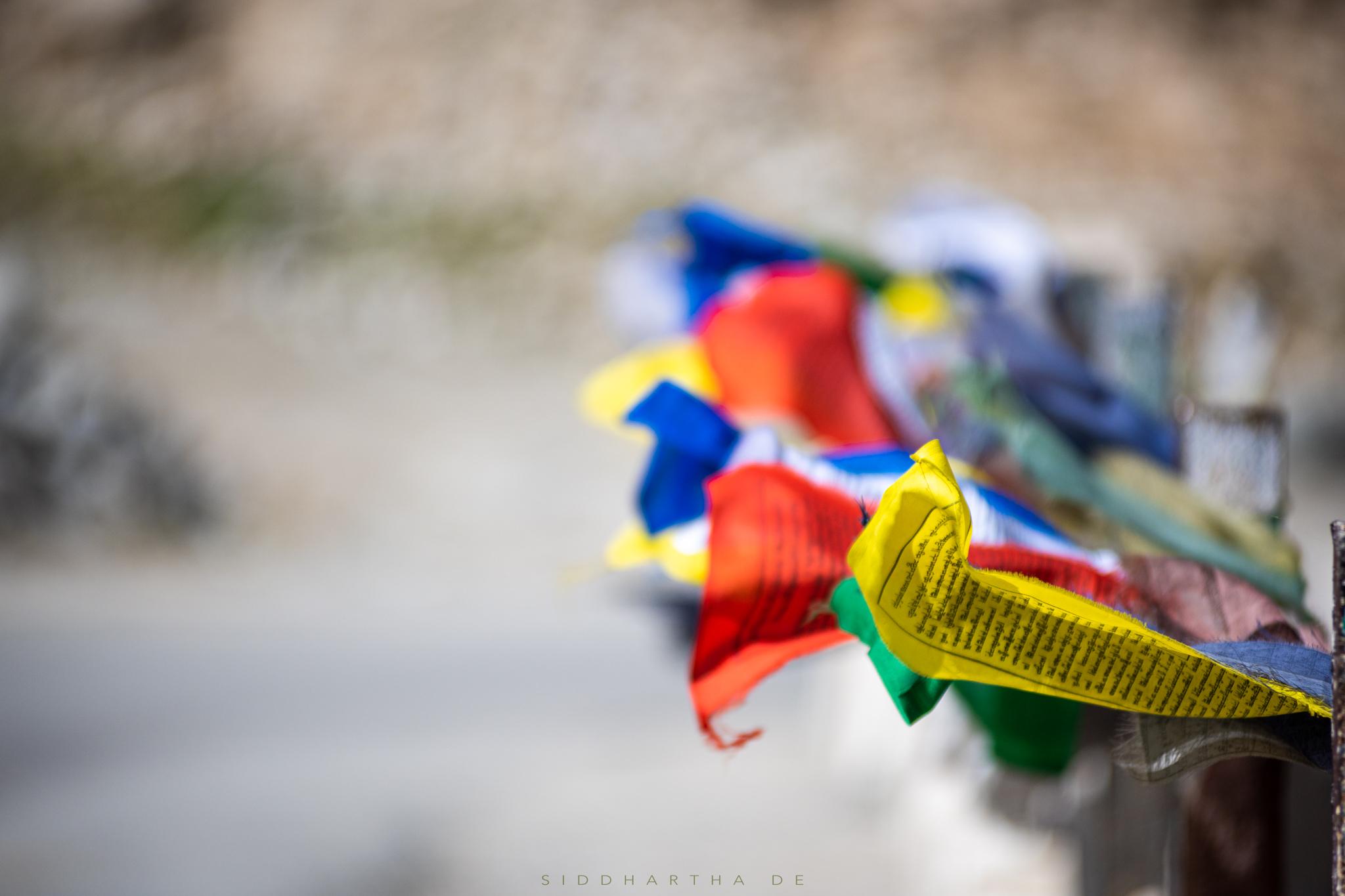 SD Ladakh 2019 15.jpg