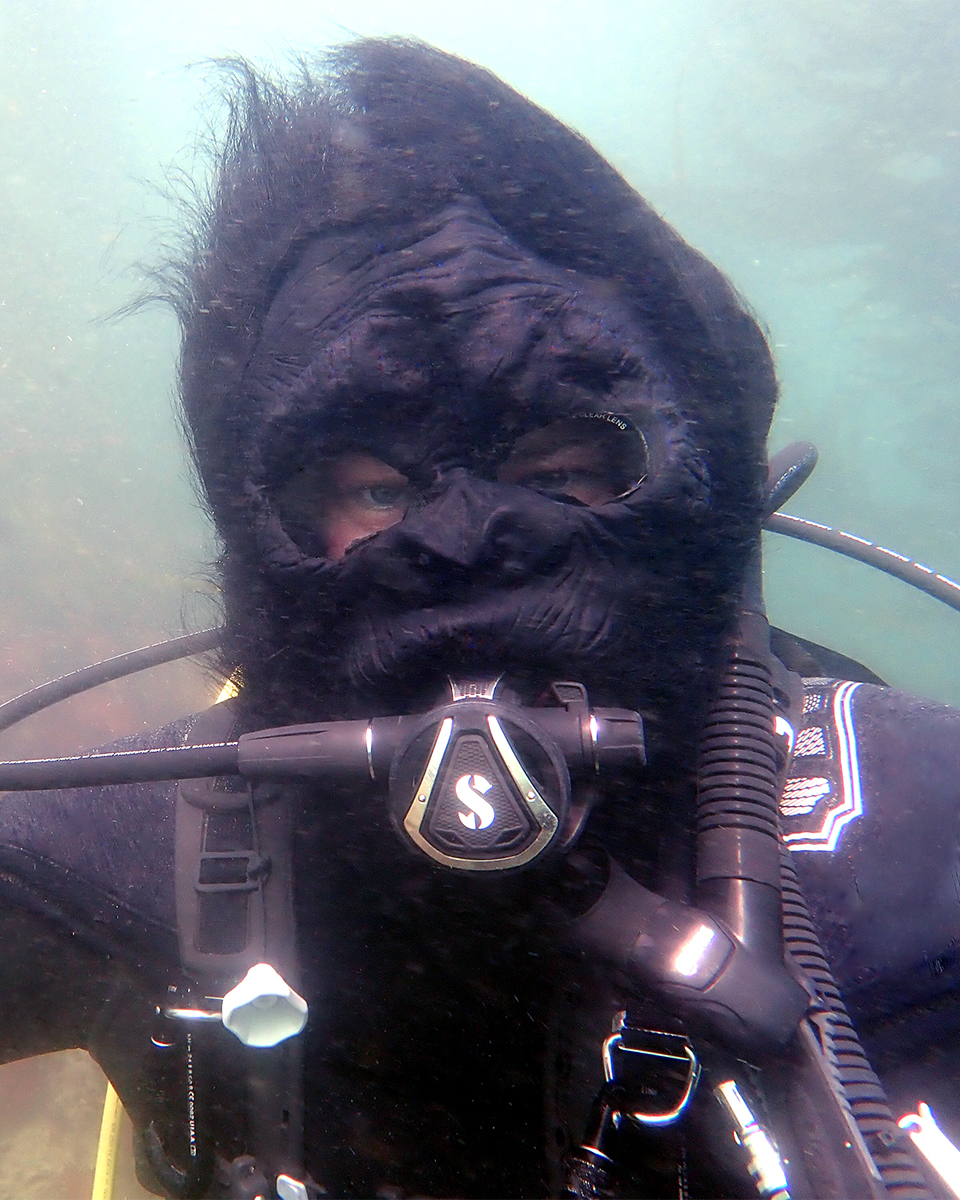 anesti-vega-halloween-diving-gorilla-mask-2018-web.jpg
