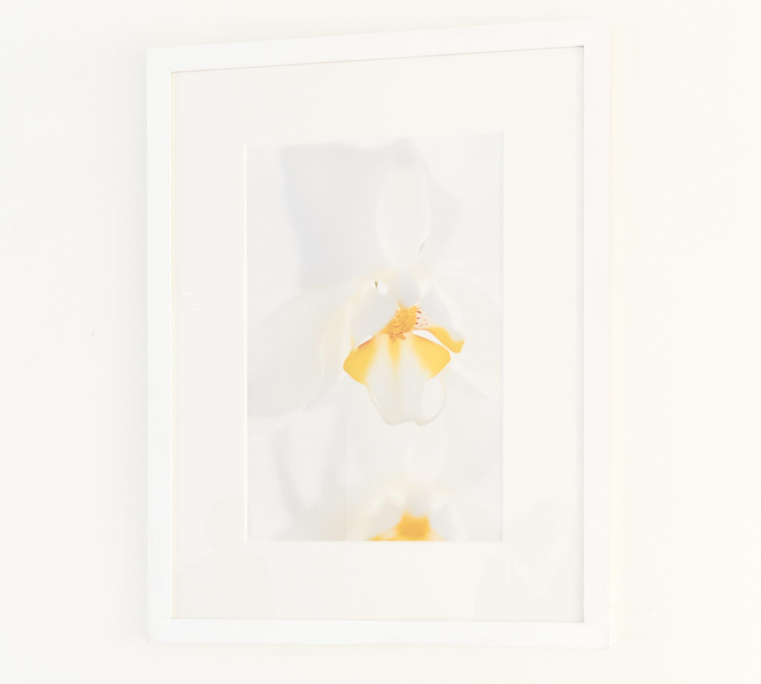 Butterfly effect framed 3.jpg