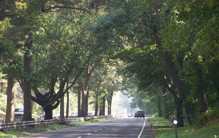 Merritt Parkway in Connecticut / Image: State of Connecticut