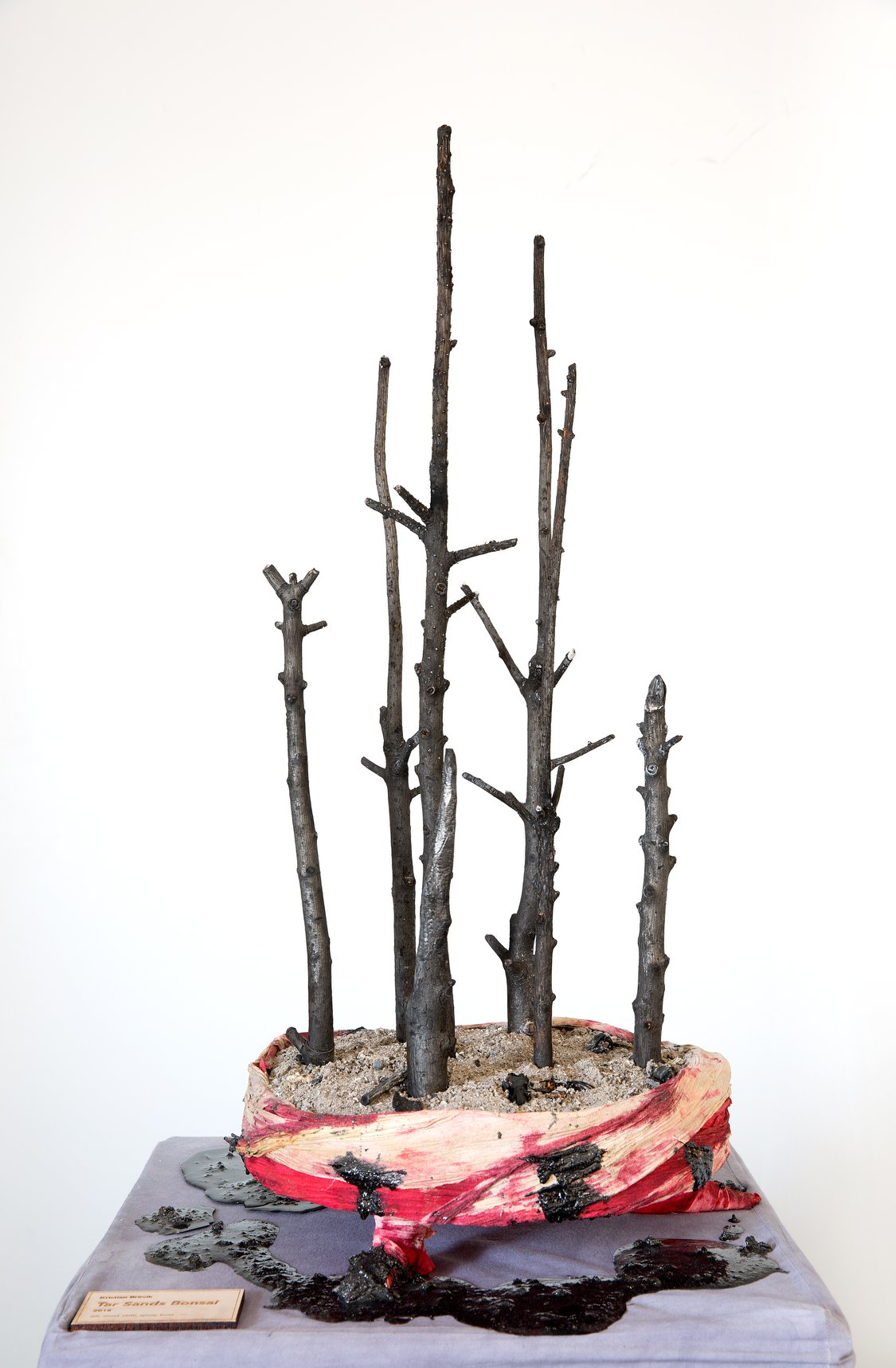 "Kristian Brevik - ""Tar Sands Bonsai"" Insta: @starwatcherbrevik  For Sale: Price Upon Request"