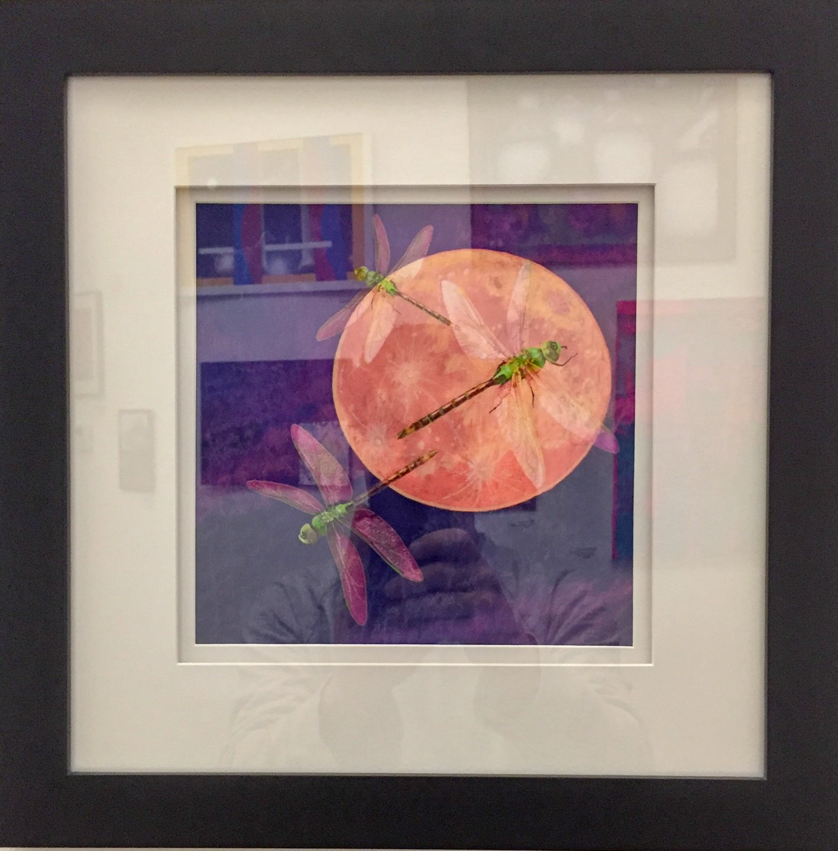 "Ceili Seipke - ""Dragonfly Bloodmoon"" @ceiliseipke  For Sale: $150"