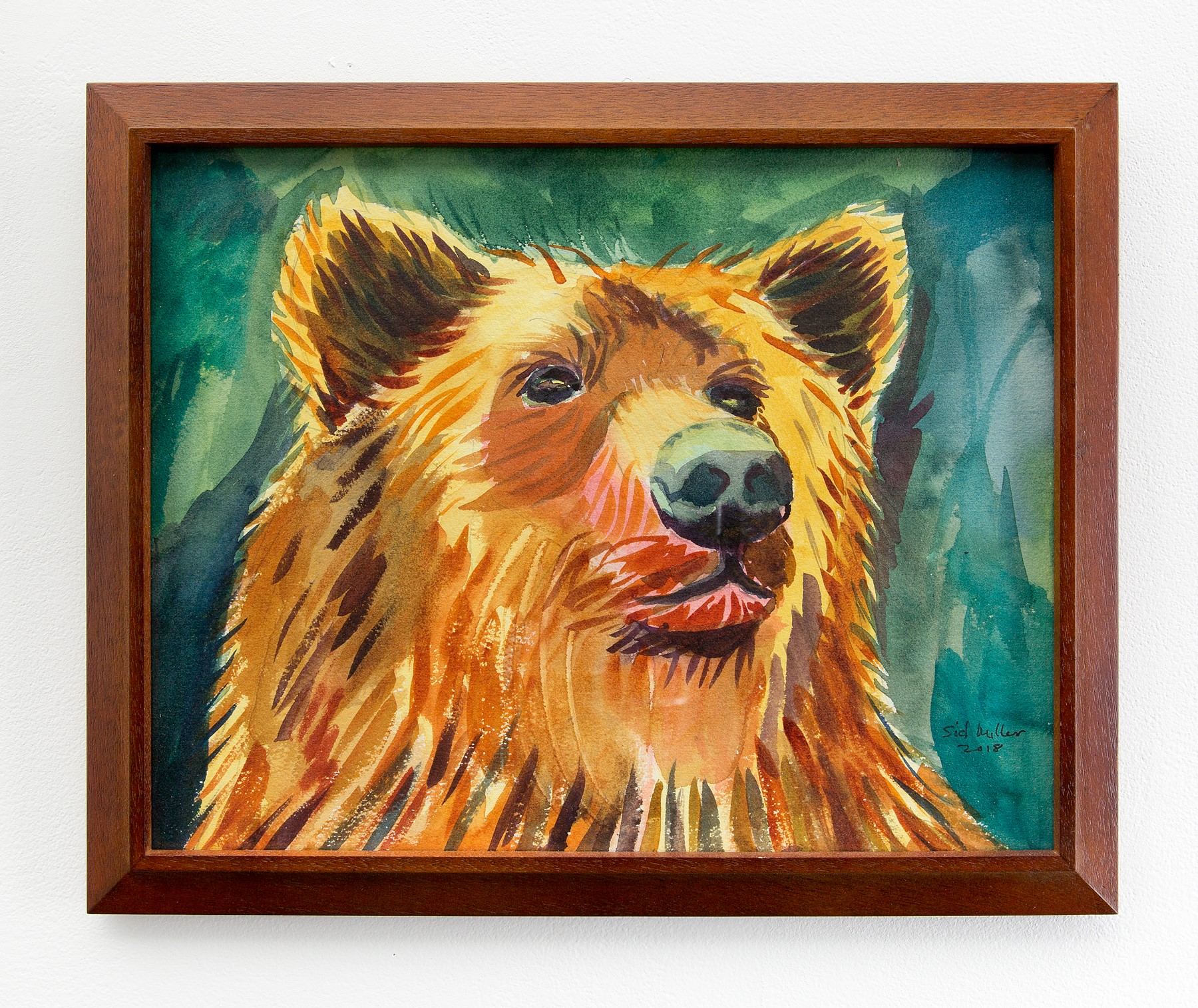"Sid Miller - ""Brown Bear"" For Sale: $100"