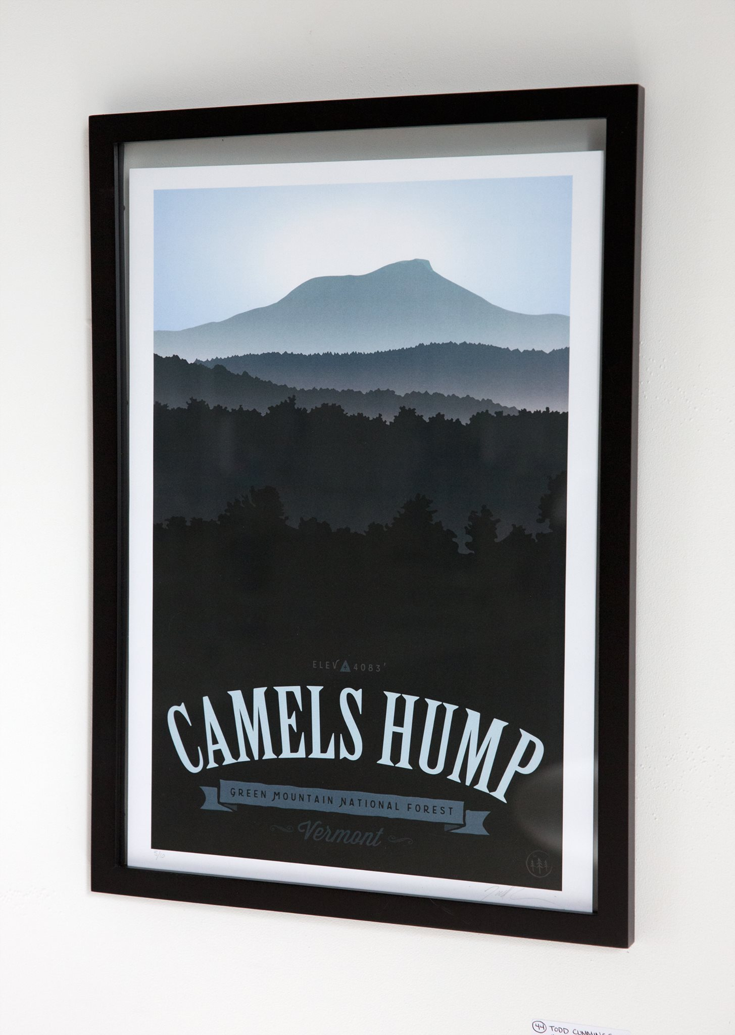 """Todd Cummings - """"Camels Hump"""" Insta: @Forestcitydesigns  For Sale: $160"""