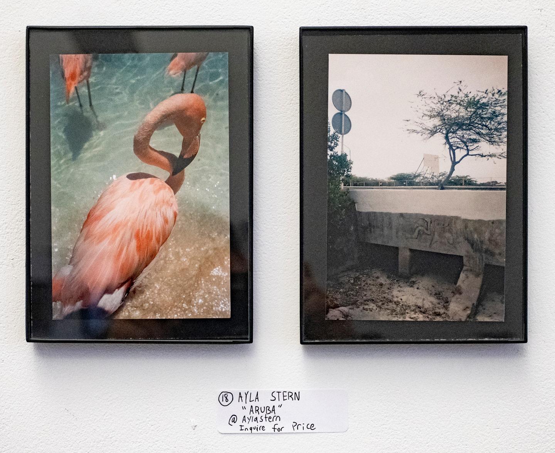 "Ayla Stern - ""Aruba"" Insta: @aylastern  For Sale: Price Upon Request"