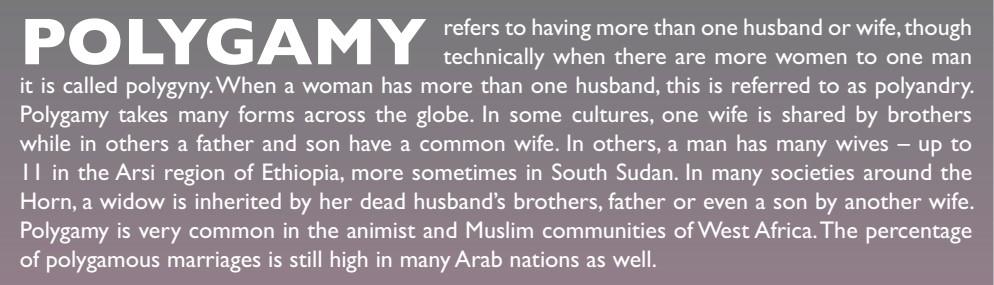 polygamy box.jpg