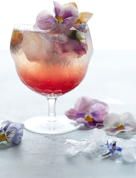 spring_drink_contact.jpg