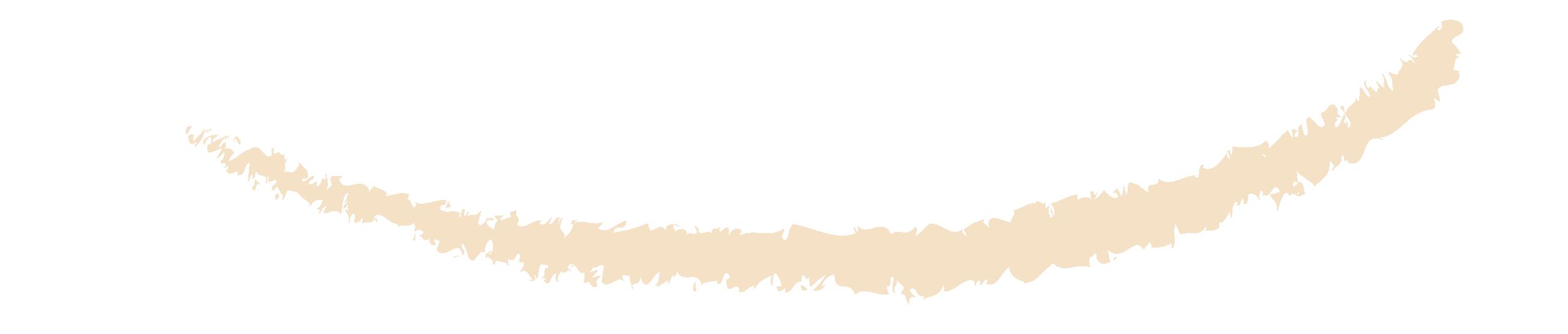 traço180-01.png