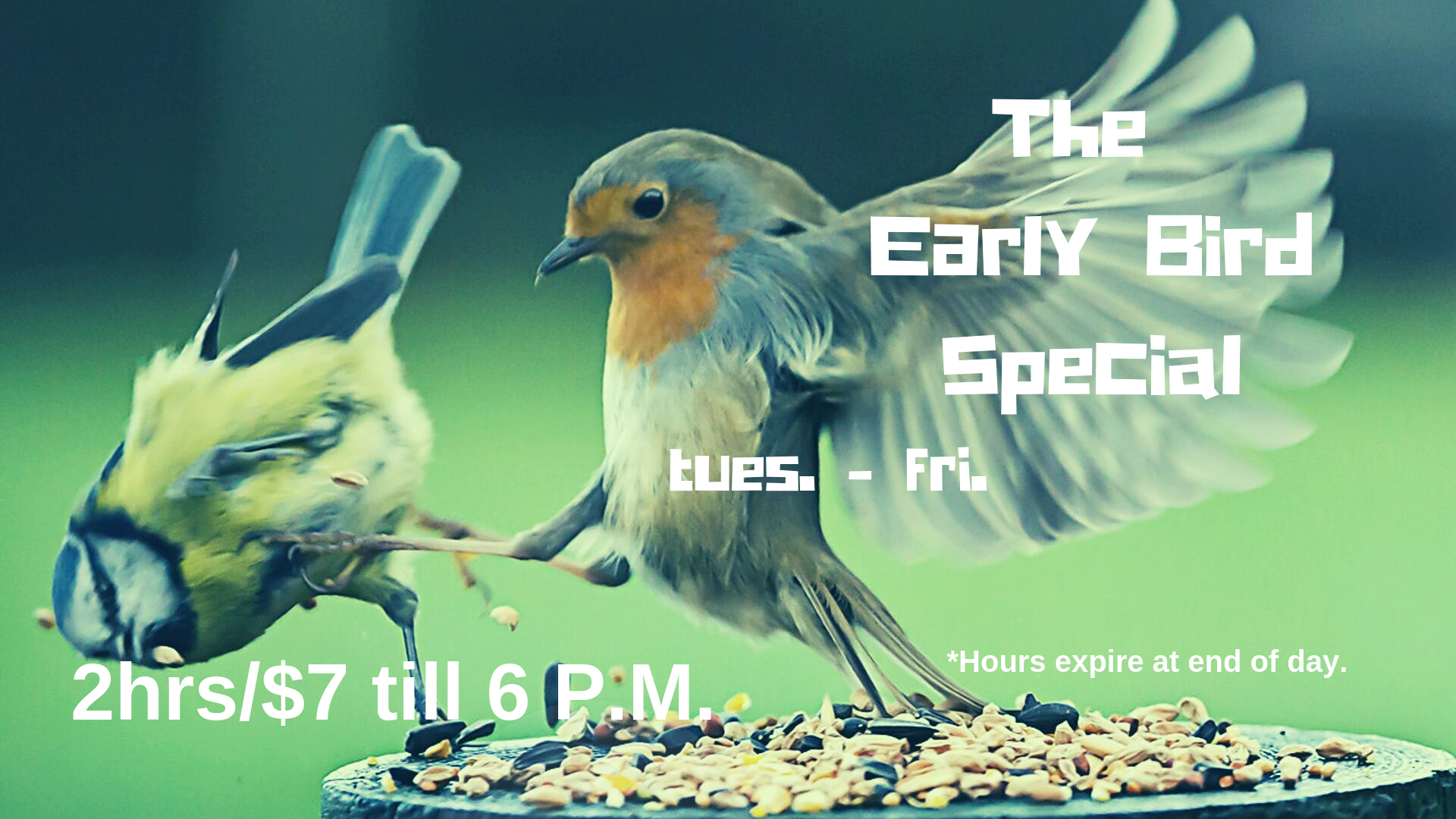 LRG.of Early Bird Special.png