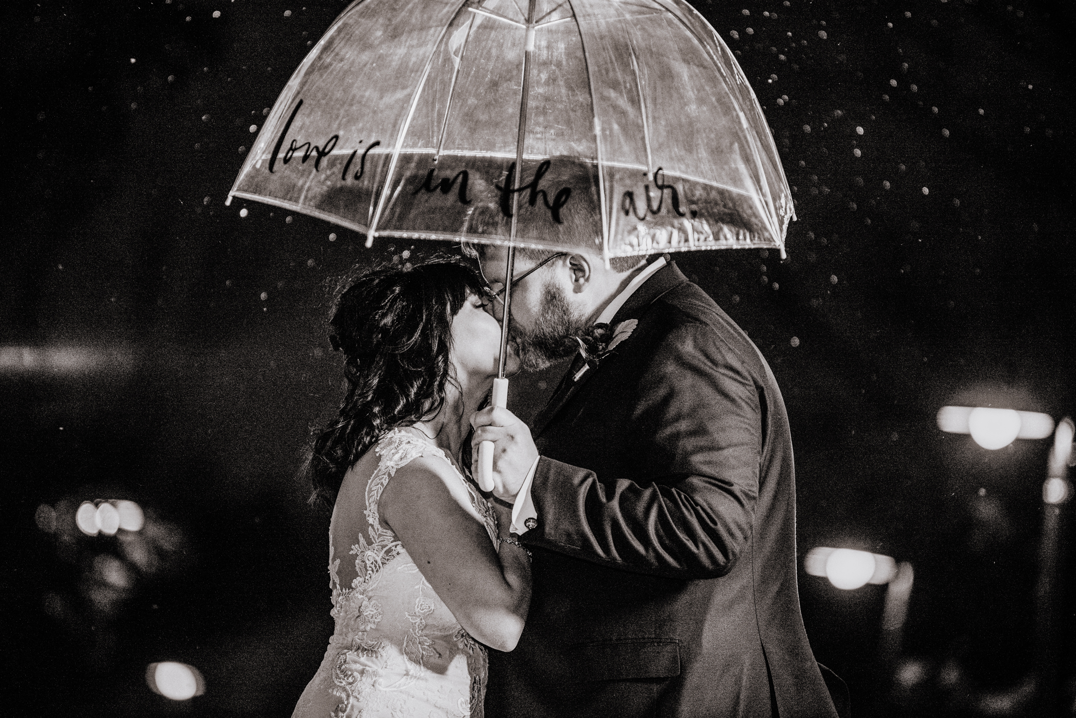 Heather and Brian \\ Lisle Illinois Wedding