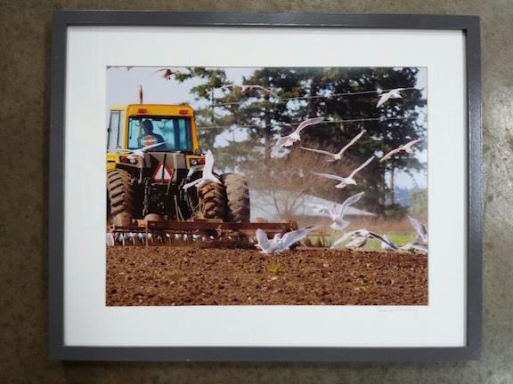 tractormedley