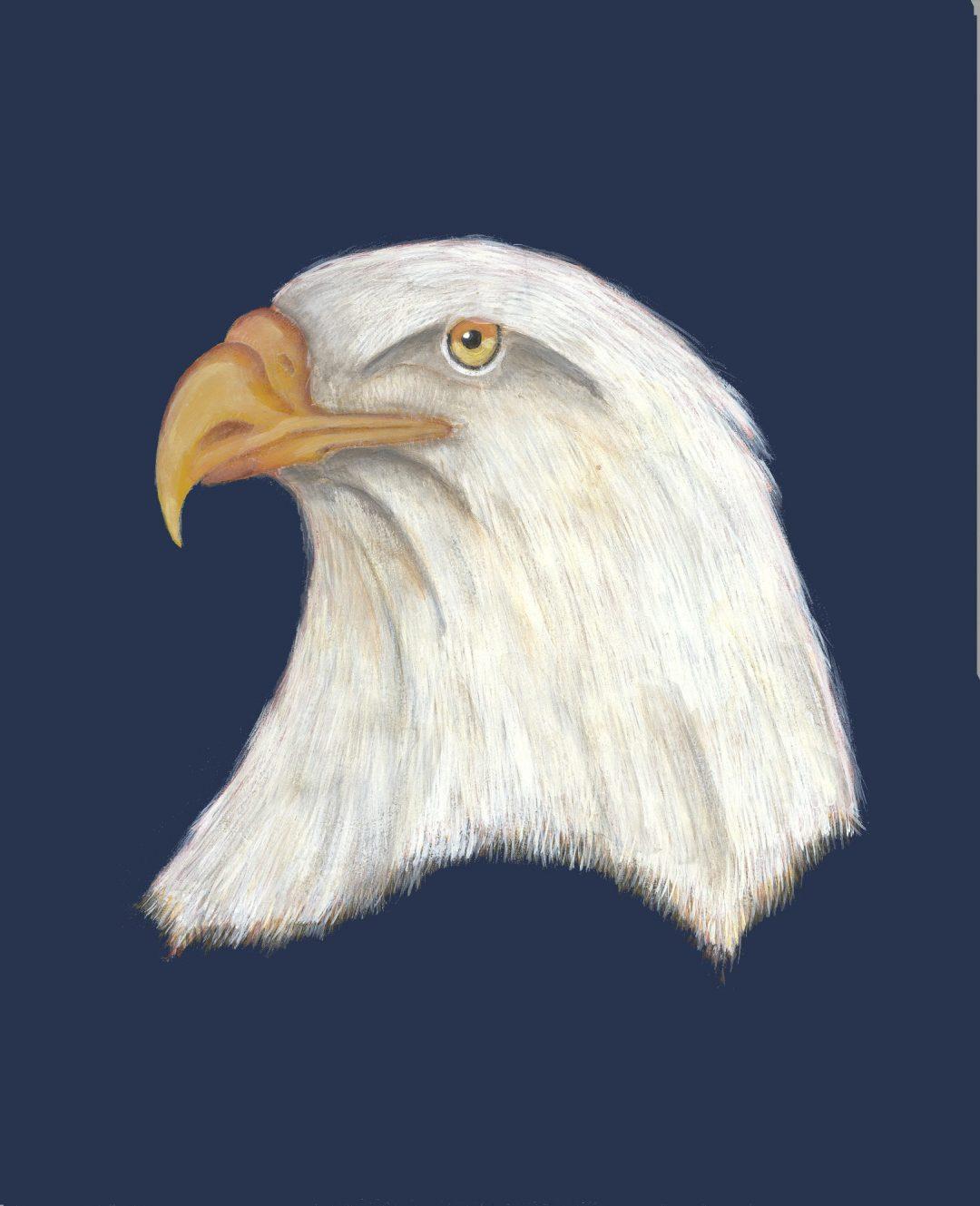 Eagle Spirit Painting