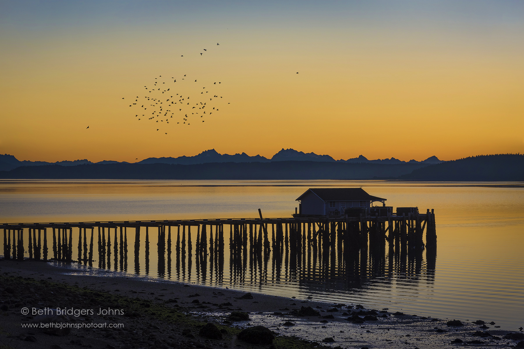 San de Fuca Sunrise with Birds