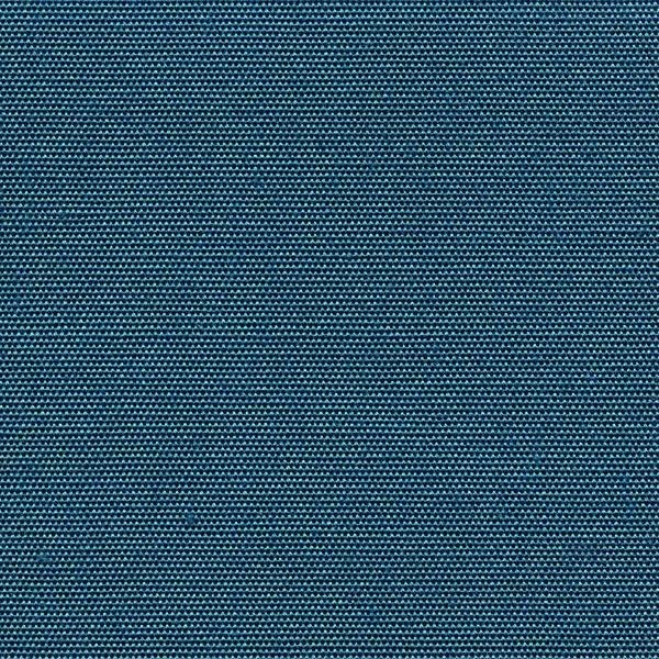 4881_Blue_Jay.jpg