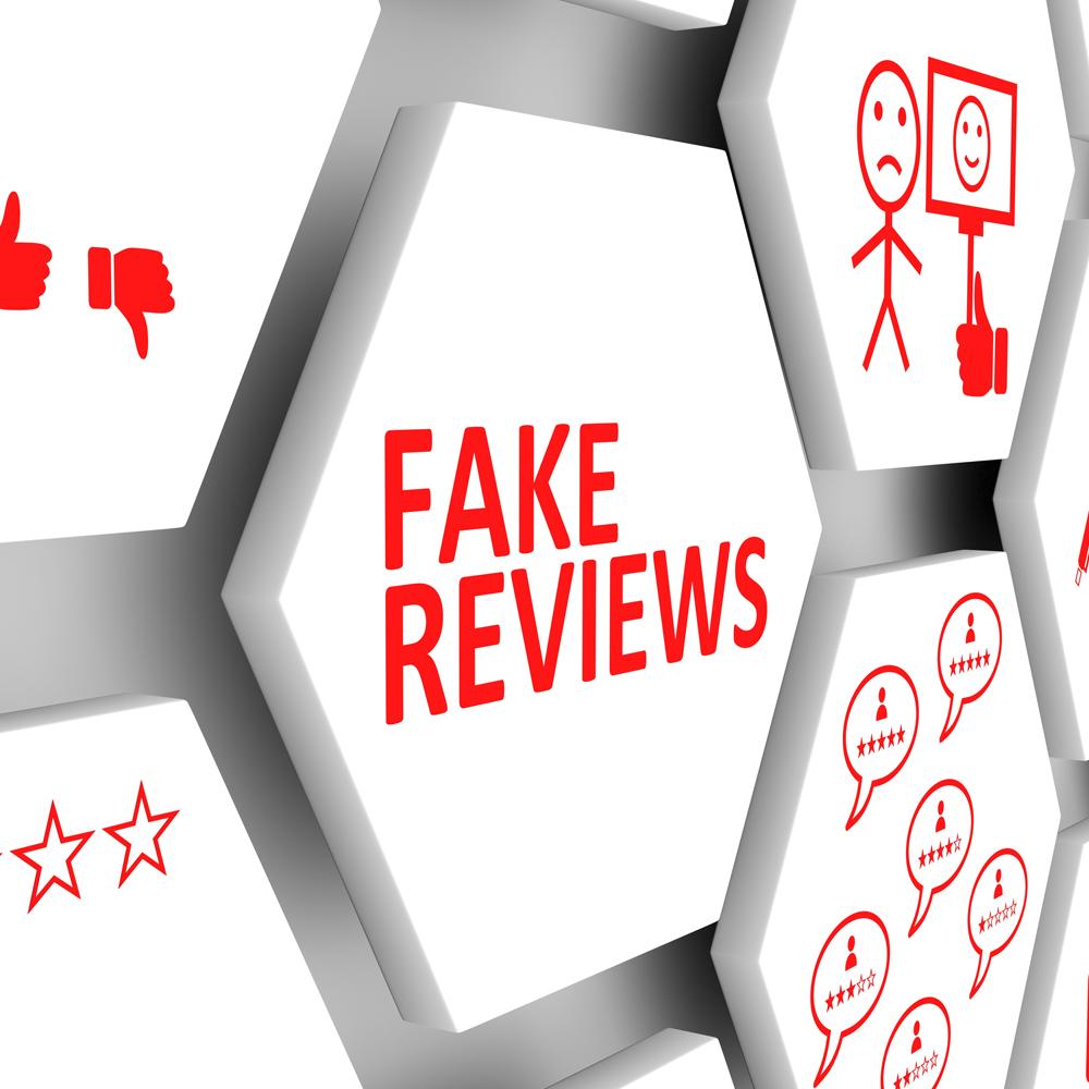 fake review.jpg
