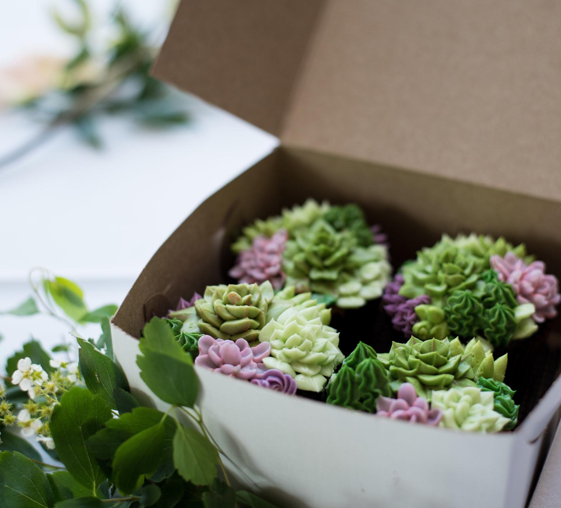 Cupcakes London Ontario | Bake Shop Studio