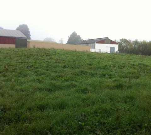 Drip Project Housing Estate - drip field