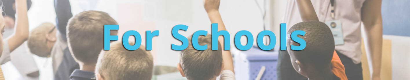 For Schools website block.jpg