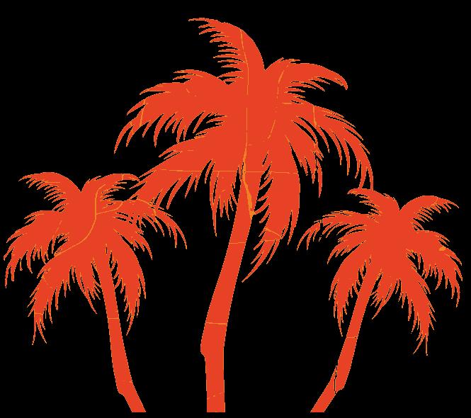 Orange Palm Trees - SEO Content Marketing